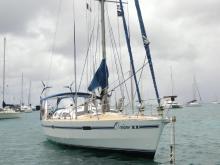 Ovni 43 :  Martinique anchorage